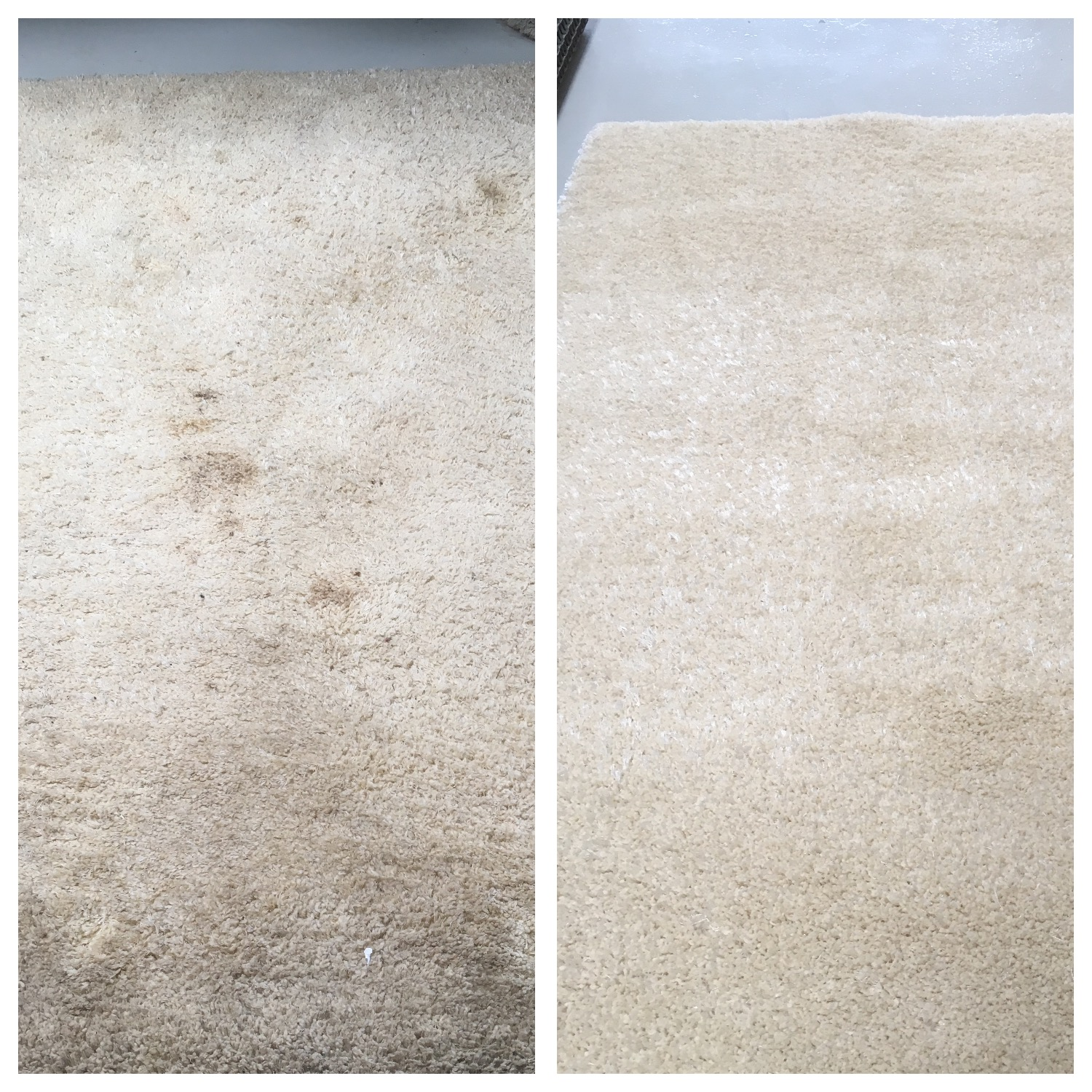 Rug Cleaning Cheshire