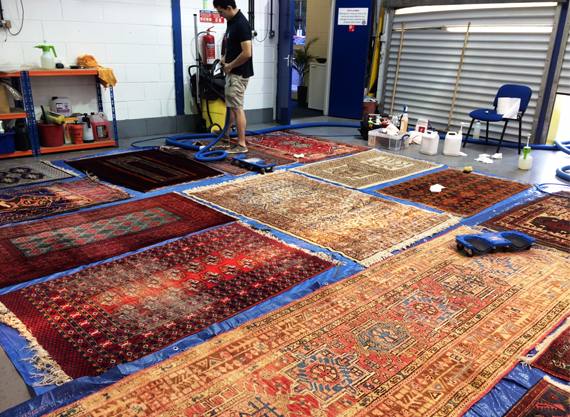 Rug Cleaning on site by the rug cleaning experts