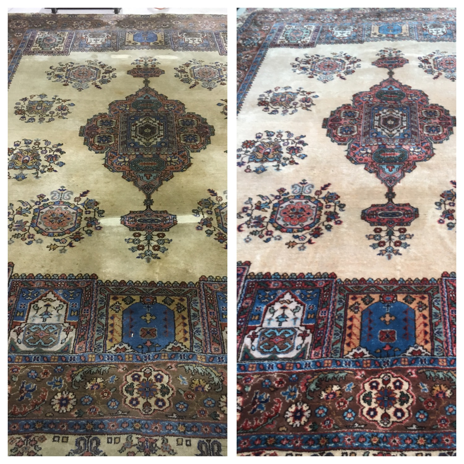 Cheshire Rug Cleaning Axminster