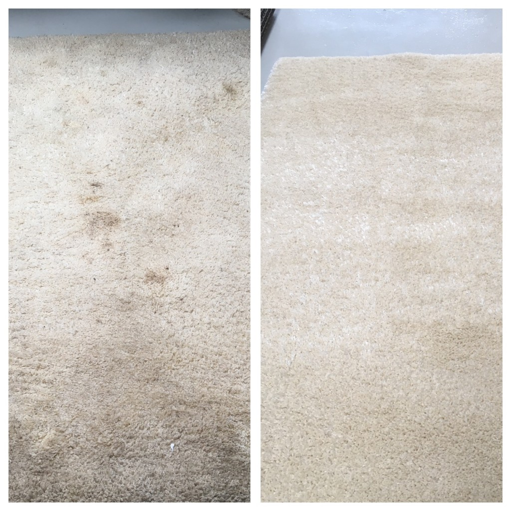 Cheshire Rug Cleaning Your Rug Cleaning Specialists