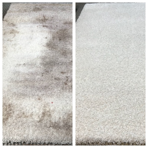Rug Cleaning Cheshire white rug cleaning