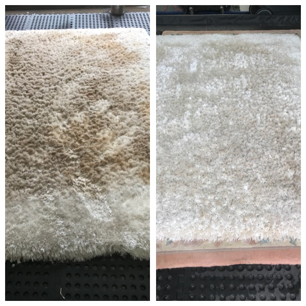 Cheshire Rug Cleaning Pale Cream Poly Rug