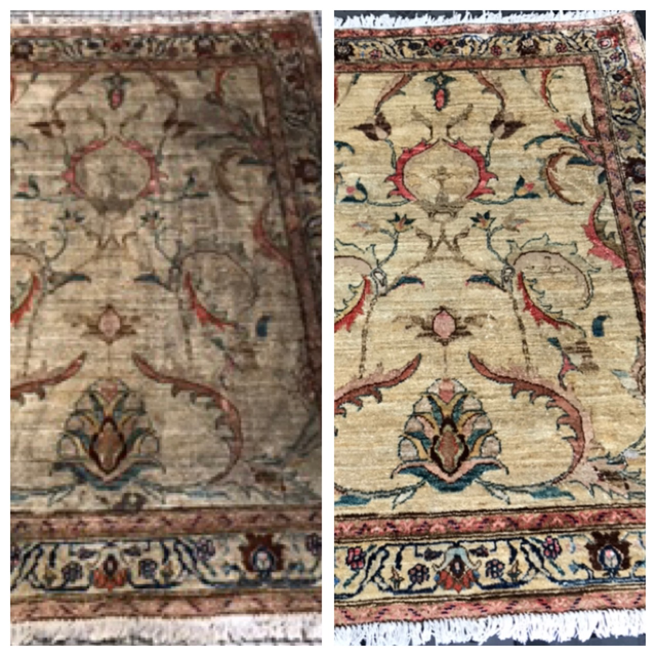 Rug Cleaning Before & After